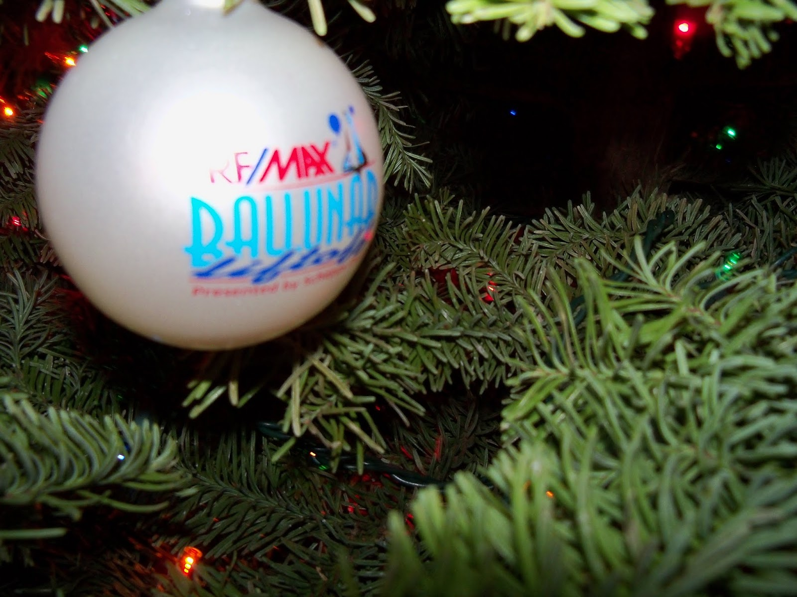 Christmas 2012 - 115_4828.JPG