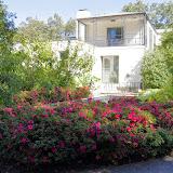 10-26-14 Dallas Arboretum - _IGP4282.JPG
