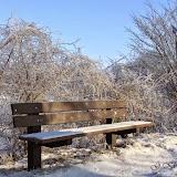 Winter - Winter-019.jpg