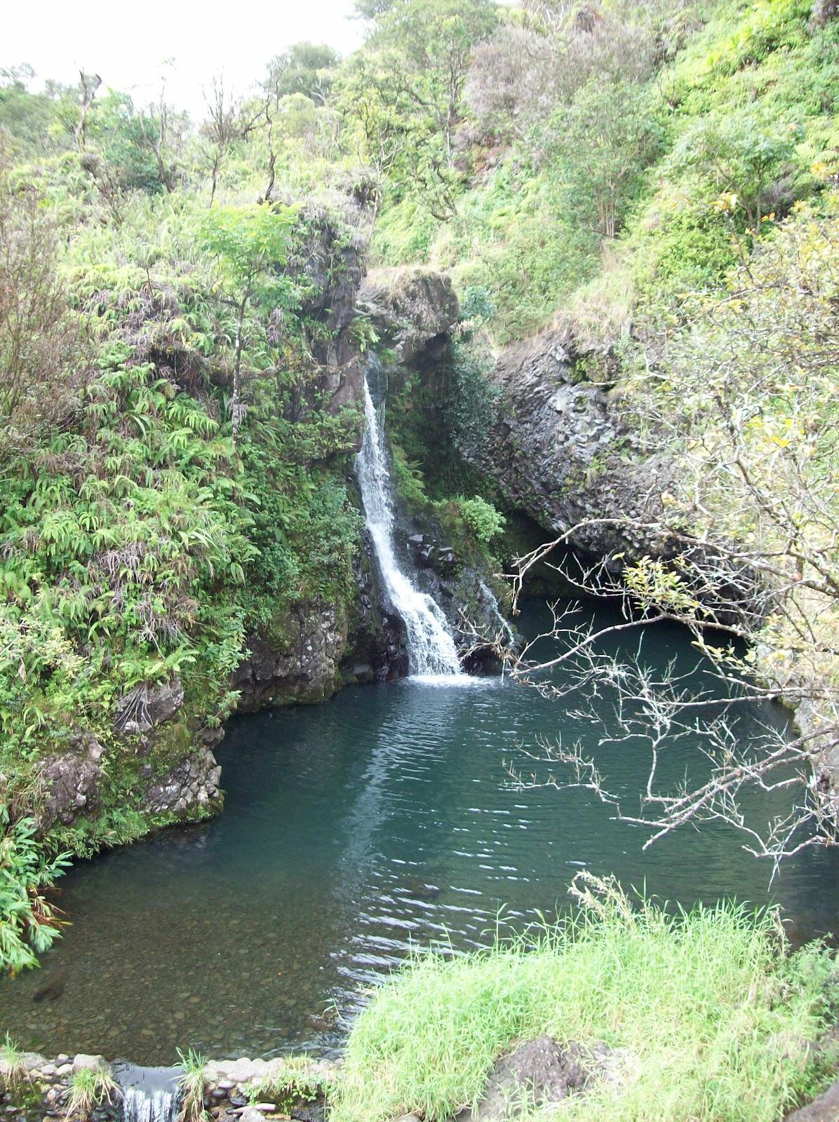 Hawaii Day 5 - 114_1500.JPG