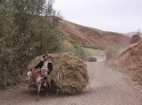 Transport de marchandise au Kirghistan!