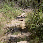 Track down to Pope's Glen (15202)