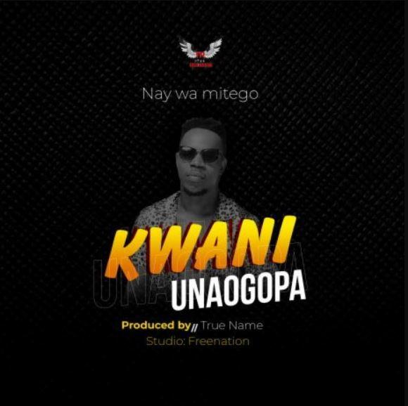 AUDIO: Nay Wa Mitego - Kwani Unaogopa | Mp3 DOWNLOAD