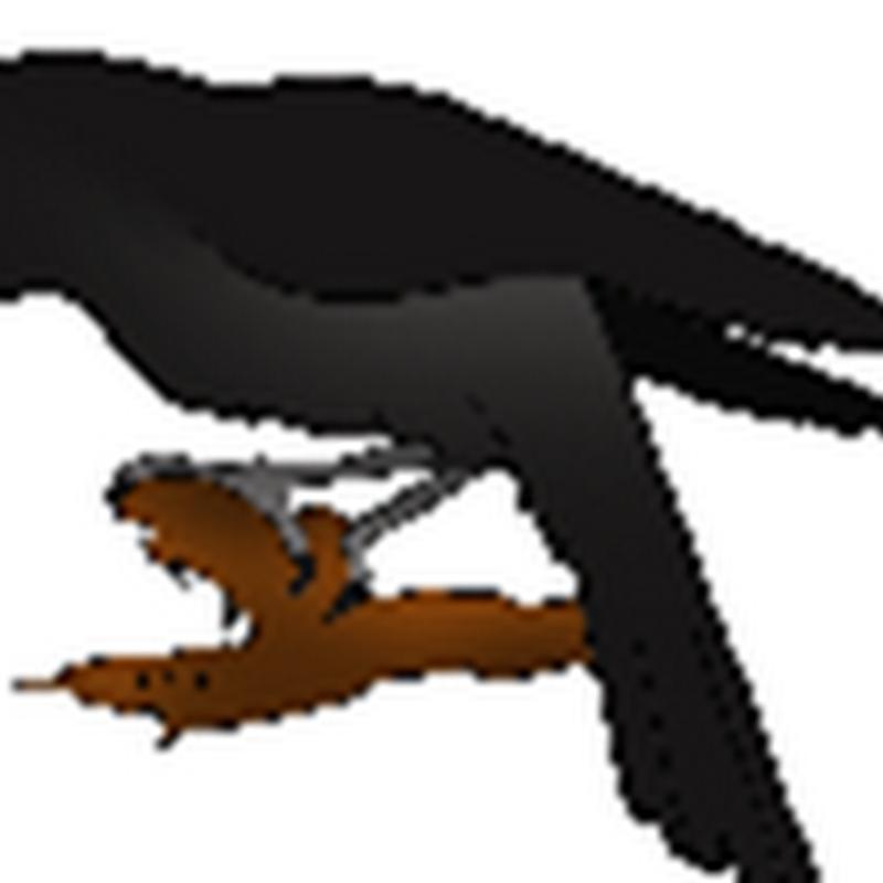 रैवन की लोककथाएँ - 2 - : 20 जब रैवन मारा गया // सुषमा गुप्ता