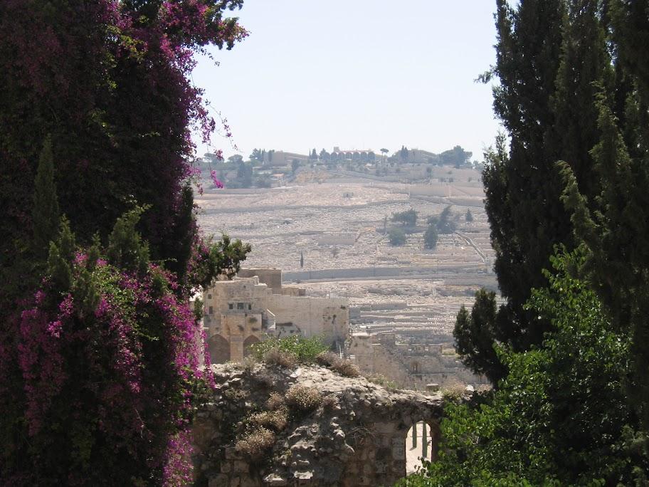 israel - 289.jpg