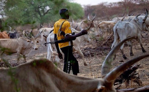 Herdsman Allegedly Stabs 25-Year Old Man To Death In Oyo