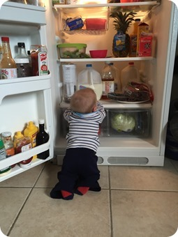 Henry in the Fridge