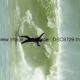_DSC9729.thumb.jpg