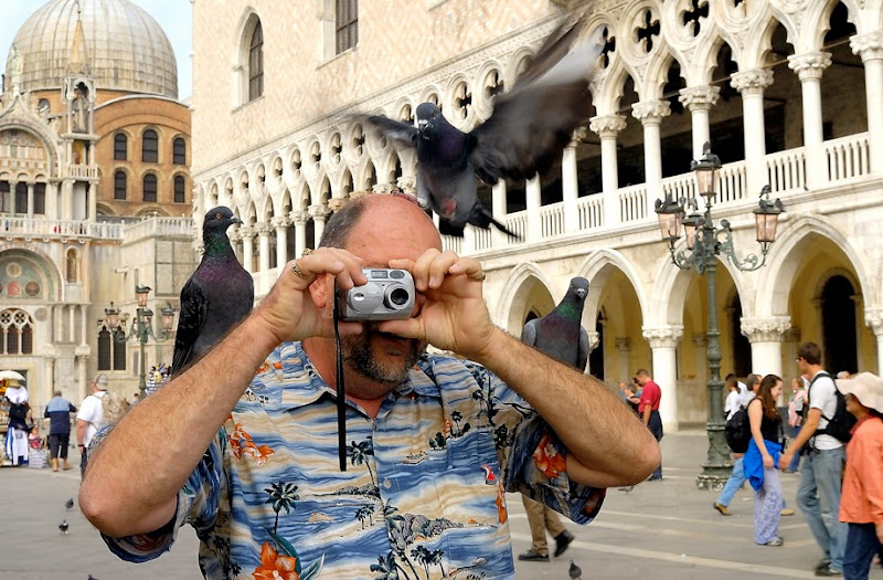 68. Doves of Piazza San Marco. Venice. 2006