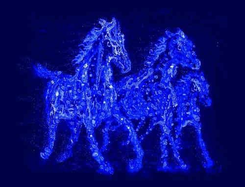 Caballitos azules