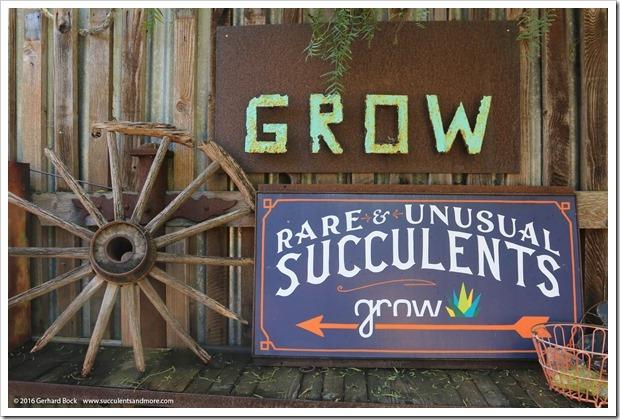 160322_Cambria_Grow_0008