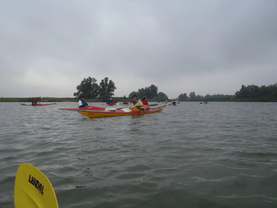 Weekend Biesbosch - P9190005.JPG
