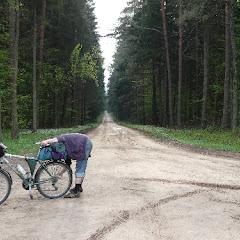 8.Leśny szlak rowerowy  Zmierzając w kierunku ostatniego noclegu, przez dłuższy czas jechaliśmy szlakiem rowerowym. Wspaniała prosta droga przez las doprowadziła nas bez dodatkowych, nieprzewidzianych atrakcji do wsi Topiło. Naszą uwagę przykuło miejsce przygotowane pod ogniska i imprezy, po negocjacjach z właścicielem za niewielką opłatą pozwolono nam, po raz ostatni już - rozłożyć namioty. Na zwieńczenie dnia rozpaliliśmy ostatnie wspólne ognisko.