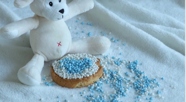 biskuit bayi 6 bulan