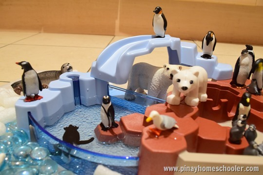 Sensory Bin of Polar Animals