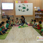 Green Day Celebration of Nursery Evening Section at Witty World, Chikoowadi (2017-18)