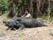 A very happy Mr Tanos with another big boar of 100kg+
