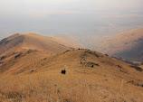 pogled s planine Ara.jpg