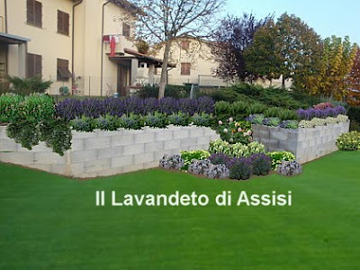 progetti giardini online gratis progetti giardini privati ... - Come Progettare Un Giardino Rettangolare