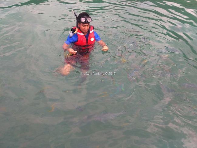 snorkeling di pusat taman laut pulau tioman