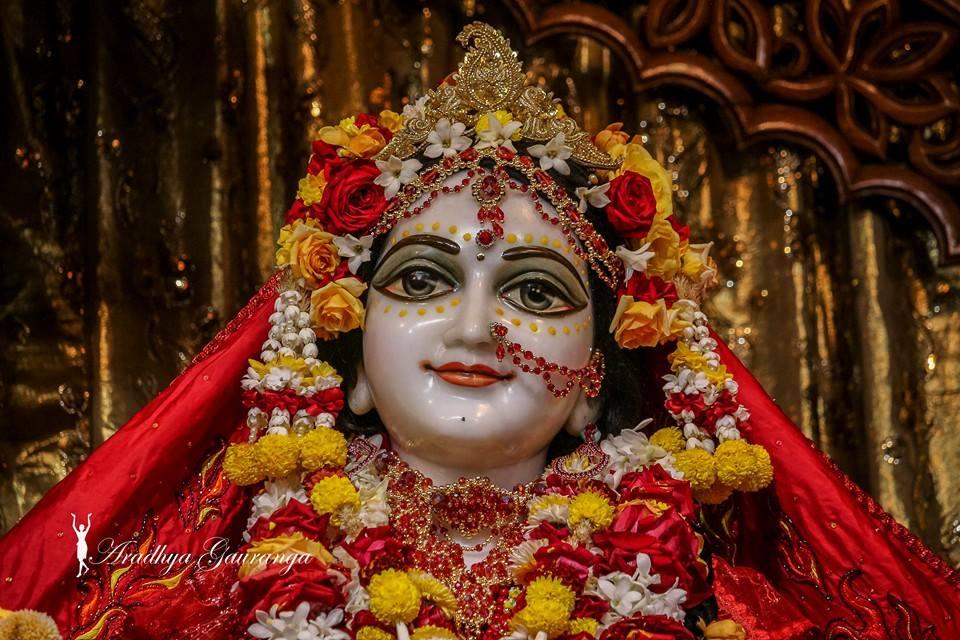 ISKCON Mayapur Deity Darshan 06 Jan 2015 (1)