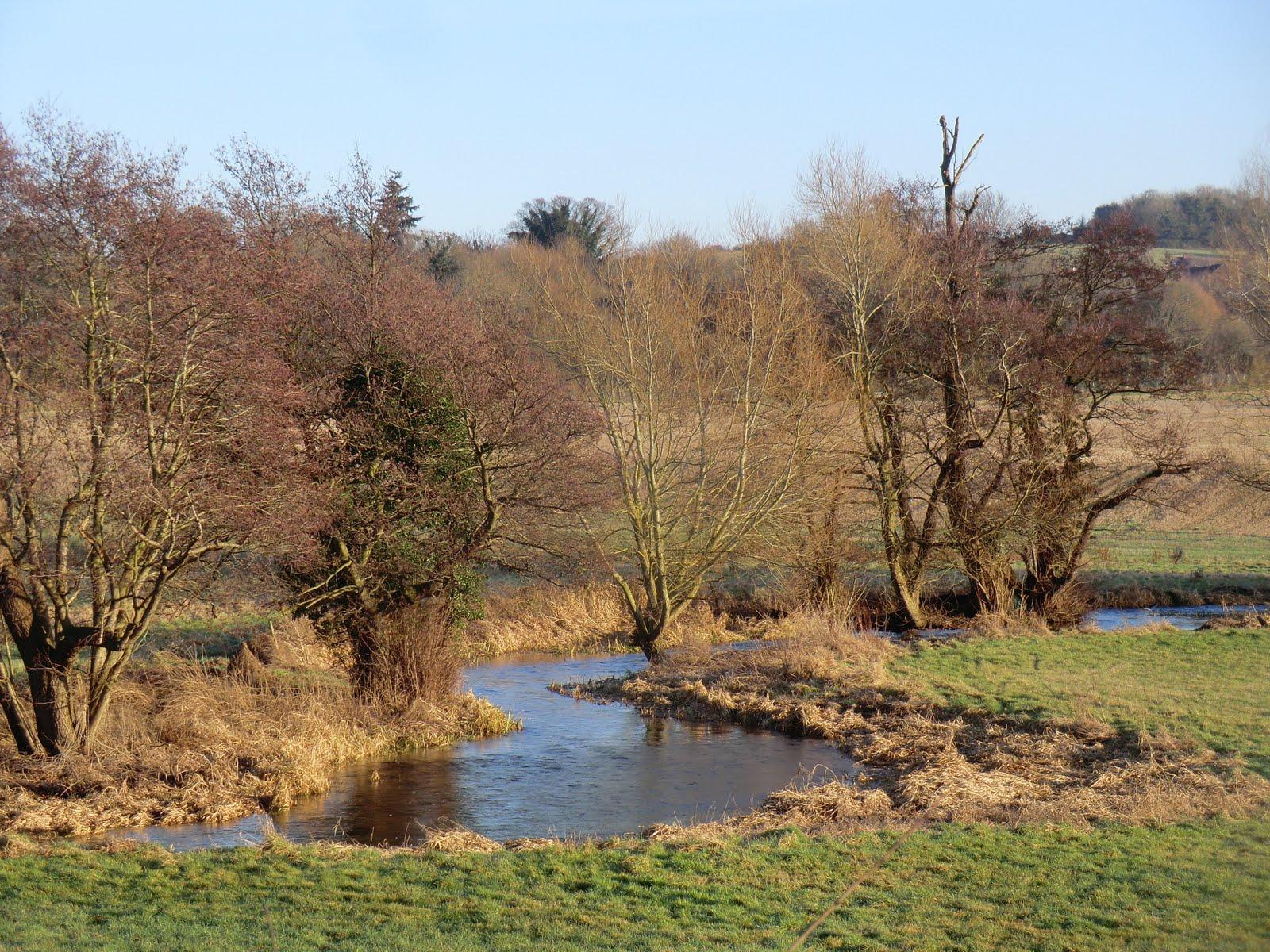 CIMG8402 River Darent near Eynsford