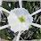 Alabama Nature's profile photo