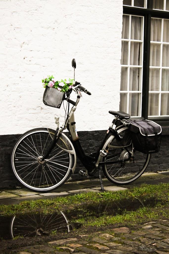 Belgium - Brugge - Vika-2887.jpg