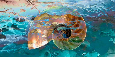 """The """"Nautilus Shell"""" piece from the """"2011"""" collection"""