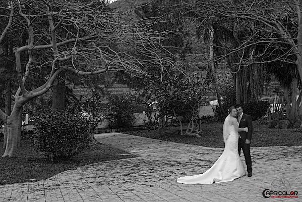 Fotógrafo de bodas Juan Francisco Afonso (capricolor). Foto del 13.07.2015