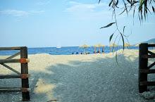 beach07