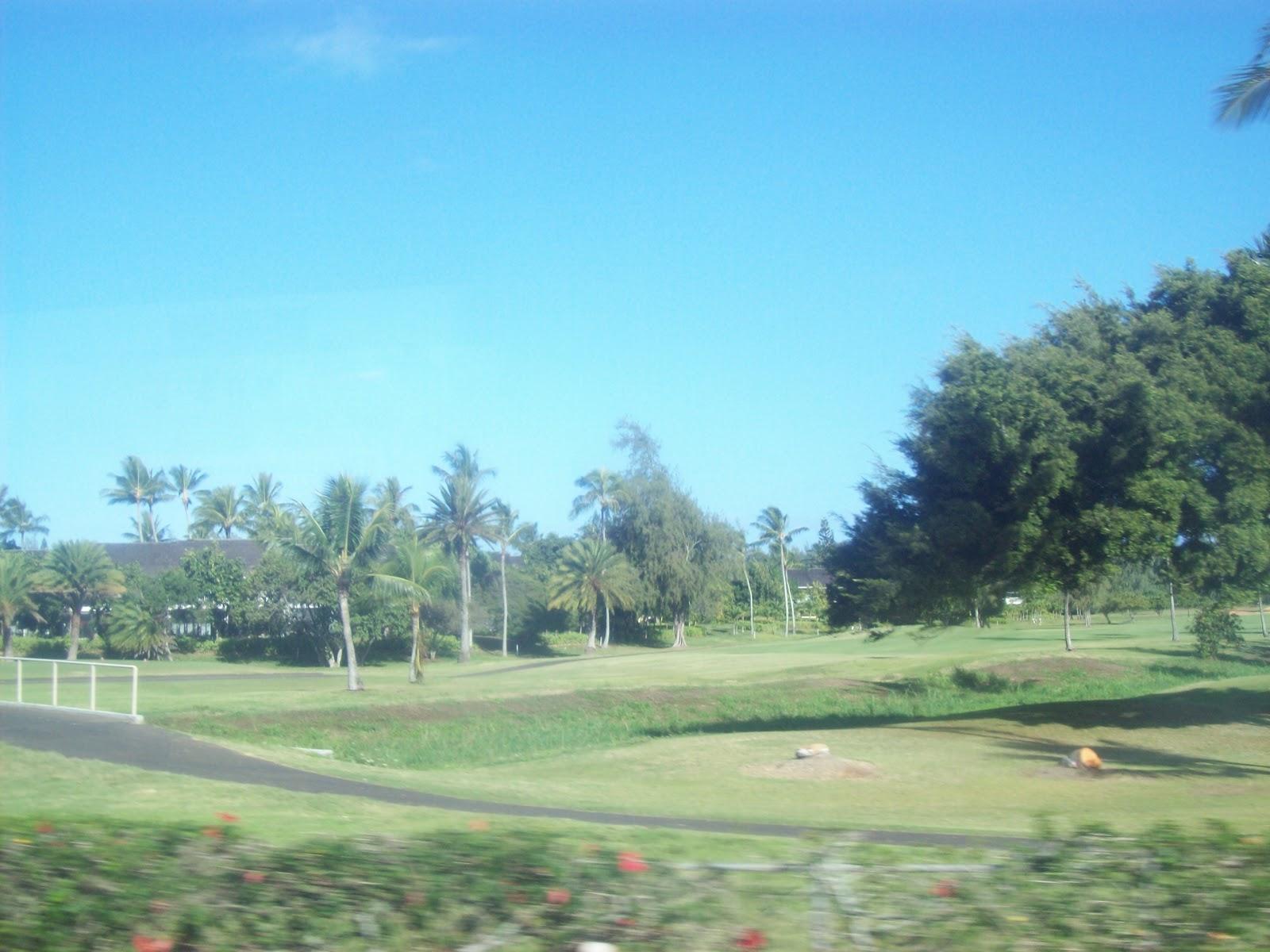 Hawaii Day 3 - 100_6945.JPG
