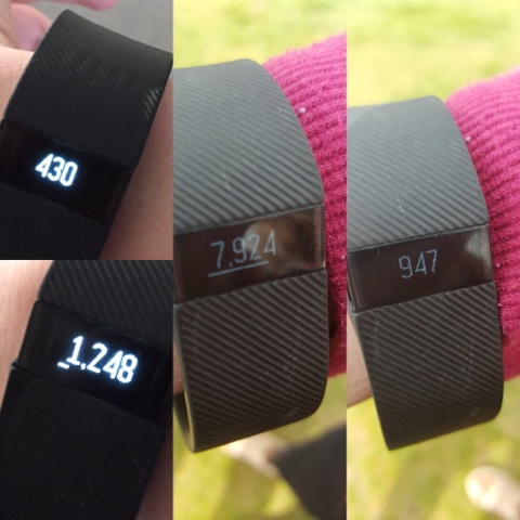 fitbit-calories-burnt