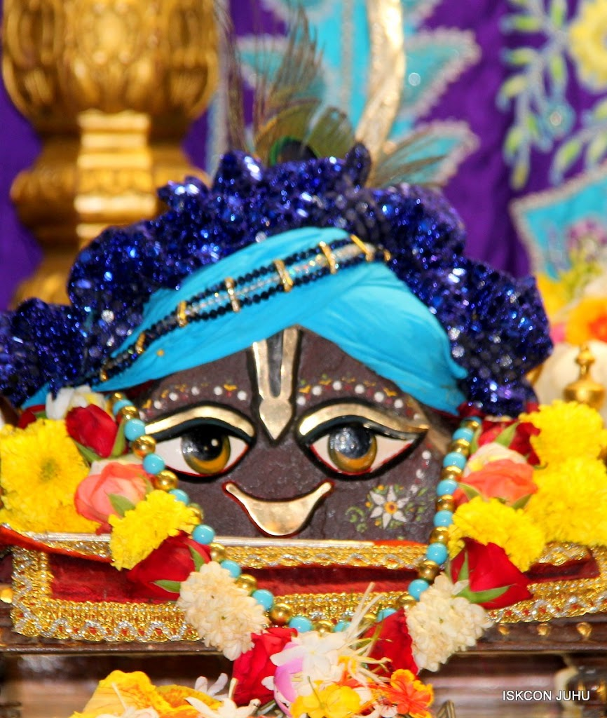 ISKCON Juhu Sringar Deity Darshan 17 Aug 2016 (50)