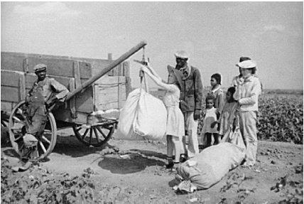UN demands reparations for slave descendents