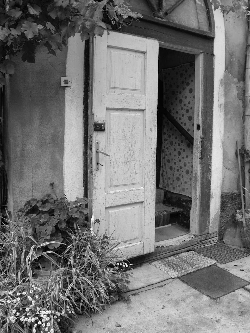 Székelyzsombor 2010 - img25.JPG