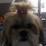 ANA MARIA Abiche's profile photo