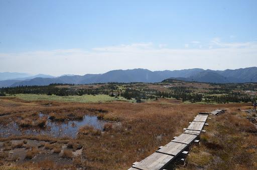 苗場山頂の大湿原