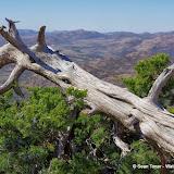 11-09-13 Wichita Mountains Wildlife Refuge - IMGP0367.JPG