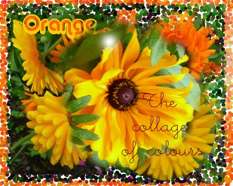 oranssikollaasi.jpg