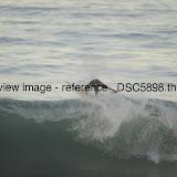 _DSC5898.thumb.jpg