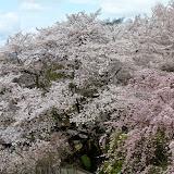 2014 Japan - Dag 8 - tom-SAM_0527-0032.JPG