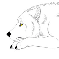 Icess The Arctic Wolf