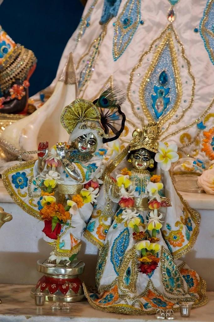 ISKCON New Govardhan Deity Darshan 08 Dec 2016 (9)