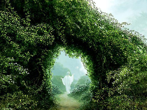 Horror Landscape Of Dream 6, Magical Landscapes 3