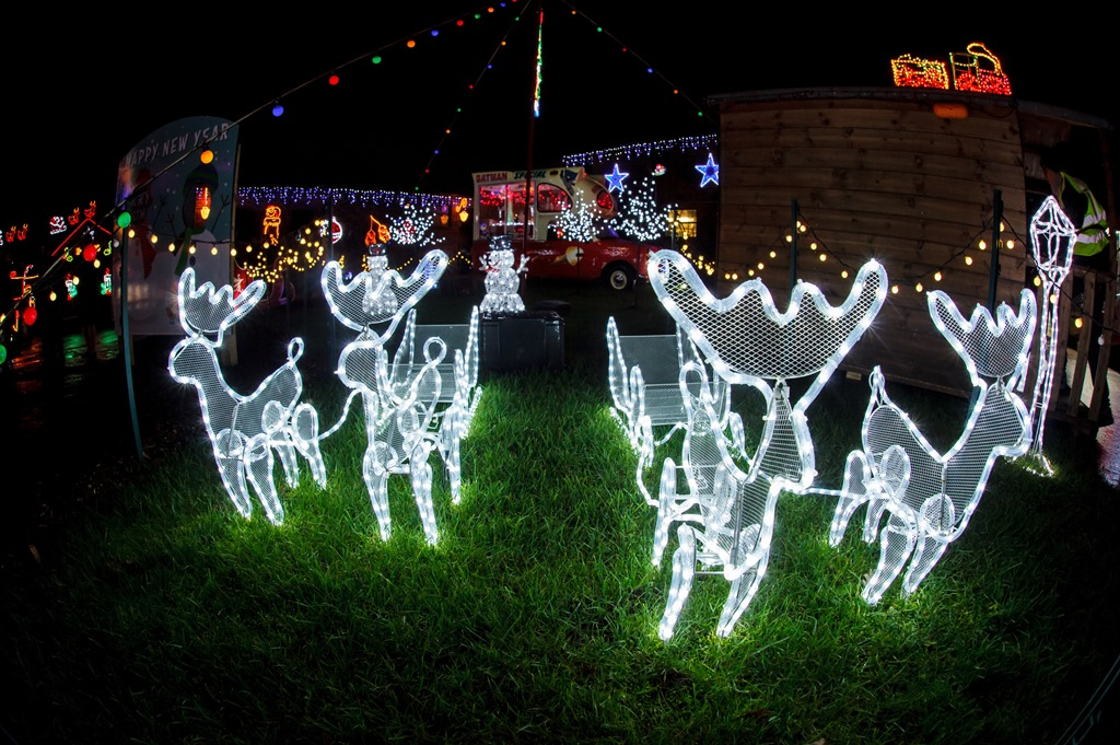 [Publicity+photo+-+Weston+Christmas+Light+Display+2018+%286%29%5B3%5D]