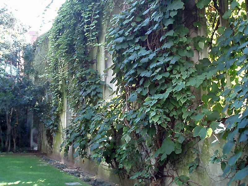 st-Dunstan-in-the-est-chiesa-1