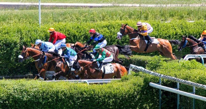 Photos Auteuil le 21-06-2014 IMG_2198