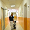 17 Corridoio Hospice.jpg