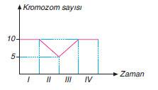 kromozom sayısındaki değişim